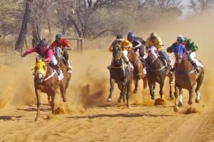 bray horse race